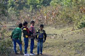 indian boys are playing in green forest
