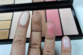 makeup revolution protection palette in