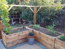 How To Build A Trellis Inexpensive Easy Designs Homestead And Chill