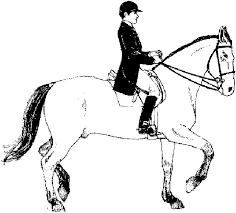 Kleuren Nu Ruiter Op Paard Kleurplaten