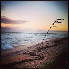 florida beach whatsapp dp nature