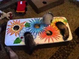 ideas for homemade ferret toys you