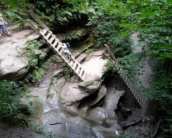 Turkey Run State Park - Trail 3 Lower ...