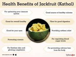jackfruit kathal benefits and its