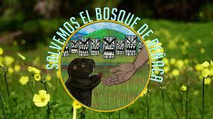Salvemos el Bosque de Reñaca - Home | Facebook