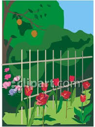 Fence In A Garden Yard With Roses Growing Along Side Royalty Free Clipart Picture