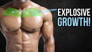 3 upper chest exercises that you