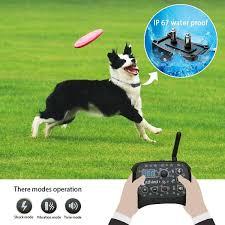 Invisible Dog Fence Dog Fence Wireless Including Dog Fence Kit Dog Fence Collar Samll Large Dog Invisible Fence 2 In 1 Wireless Dog Fence System Dog Training Collar Wish