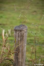 Wooden Stump Fence Post Holding Up An Old Rusted Metal Wired Fence Along The Edge Of A Farm Buy This Stock Photo And Explore Similar Images At Adobe Stock Adobe Stock