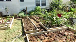 designing a raised bed vegetable garden
