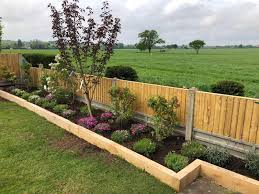 Plants And Planting Tidy Gardens For All Your Garden Needs