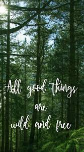 all good things are wild and don t you agree nature quote