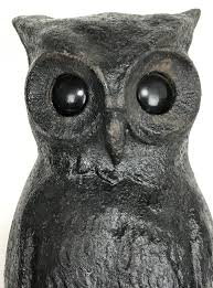 country folk cast iron owl glass eyes