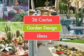 36 cactus garden design ideas
