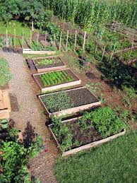 raised bed gardening to teach from and