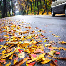 Brothers Collision : Slippery Leaves of Autumn May Cause Collisions
