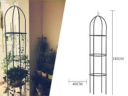 1 8m garden obelisk climbing plants