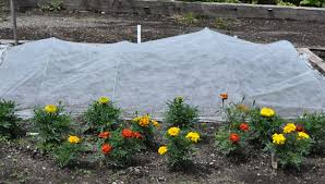 row covers shade netting frost covers