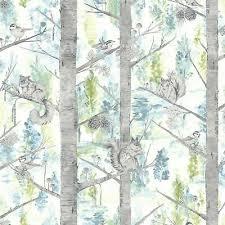 squirrels trees forest wallpaper birds