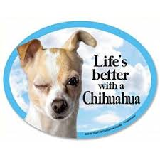 Prismatix Pcscp Chihuahua Oval Dog Magnet For Cars And Fridges Too Includes Bonus A œi Love My Doga Decal