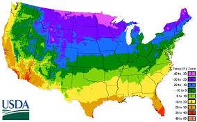 usda hardiness zone map vegetable