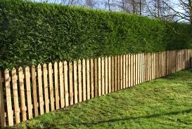 Sawn Brown Pointed Picket Jpg 3173 2143 Garden Fence Panels Garden Hedges Garden Fence