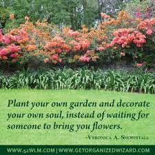 best relationship advice ever part plant your own garden