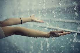rain drops hd wallpapers free hd