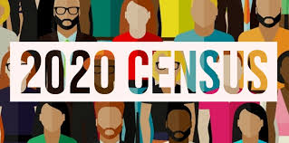 Image result for census 2020 images