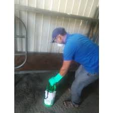 One Time Residential Pest Control Services in Pune, Rs 500 /piece | ID:  20105966855