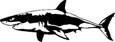Great White Shark Jaws Fish Vinyl Decal Sticker Car Truck Window 2 99 Picclick