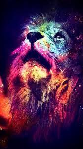 colorful free hd lion wallpaper