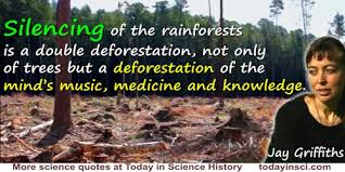 deforestation quotes quotes on deforestation science quotes