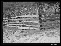 Split Rail Fence Up South Fork Of The Kentucky River Kentucky Library Of Congress