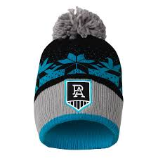 Port Adelaide Power 2020 Adults Mens ...