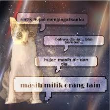 recehkucingkesayangan kucingkuquotesquotesgalaucapedeh