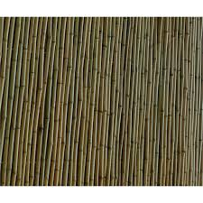 Moda Premium Bamboo Screen Fencing 1 8x1 5m Natural Bunnings Warehouse