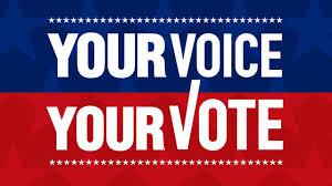 Vote 2020 Information & Resources - North Loop Neighborhood