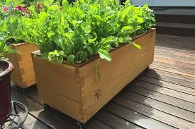 grow box the best self watering