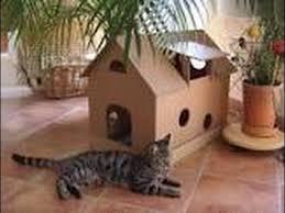 tuto maison pour chat you