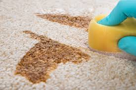 4 natural diy floor cleaner recipes