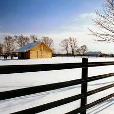 425 Flex Fence Is On Sale For The Whole Month Of February Ramm Fence Outdoors Pasture Flexfence Horse Farm Instahor Horse Fencing Horses House Styles