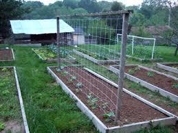 Gardendesk Building A Trellis For The Cucumbers Building A Trellis Building A Raised Garden Cucumber Trellis Diy