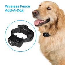 Premier Pet Wireless Add A Dog Collar Additional Or Replacement Collar Walmart Com Walmart Com