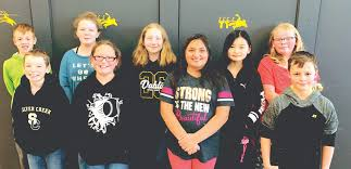 Nine student musicians from Silver Creek named to All-County Band | News,  Sports, Jobs - Observer Today