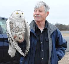 Norman Smith: Snowy Owl Project and Saw-whet Owl Migration – Hartford  Audubon Society
