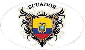 Amazon Com Cafepress Ecuador Oval Bumper Sticker Euro Oval Car Decal Home Kitchen