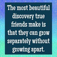 wonderful friendship quotes quotereel