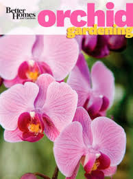 better homes and gardens orchid