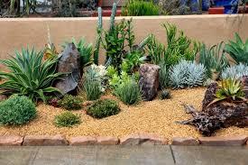 34 sharp cactus garden ideas rock